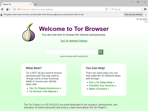 Tor Browser Window